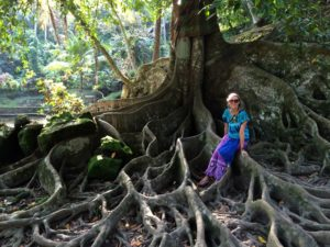 jenny bali giant tree after  she quit science to travel